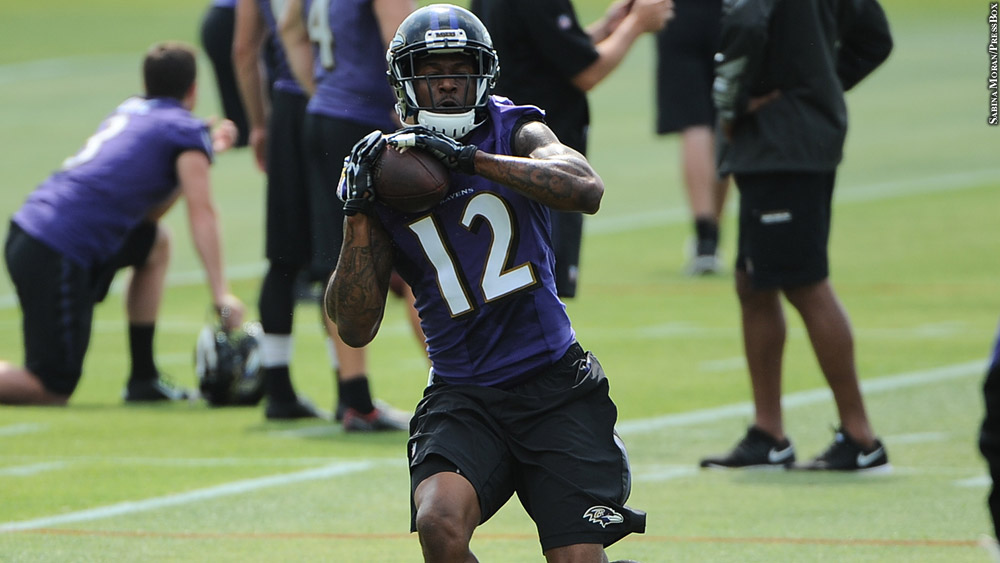 Ravens16-minicamp-mike-wallace2