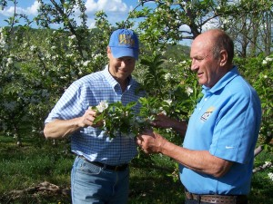 Bold-Rock-John-and-Brian-Apple-Orchard-2-300x225