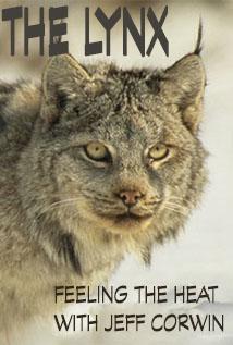 Image of Season 1 Episode 6 The Lynx