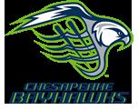 bayhawks-logo-DB2F.png