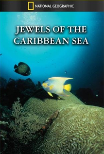 Image of Jewels of the Caribbean Sea