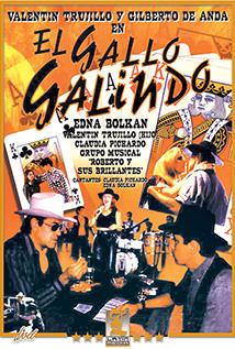 Image of El Gallo Galindo