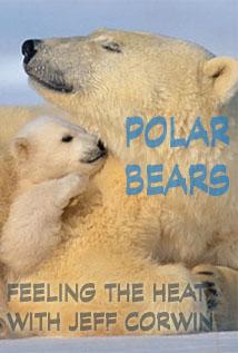 Image of Season 1 Episode 9 Polar Bears